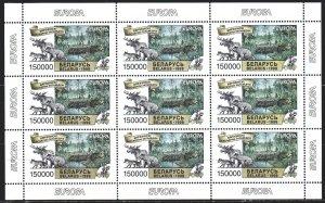Belarus. 1999. Small sheet 316. Berezinsky reserve, fauna, europe-sept. MNH.
