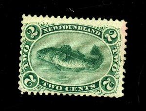 Newfoundland #24 MINT Fine No Gum Minor Staining Cat$87.50