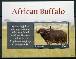 Liberia 2019 MNH African Buffalo Piapiac 1v S/S Birds Wild Animals Stamps