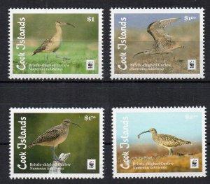 COOK ISLANDS - 2017 - BIRDS -