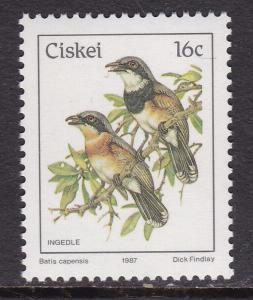 Ciskei, Fauna, Birds MNH / 1987