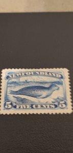 New Foundland #54 MH