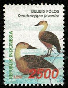 Bird (T-5169)