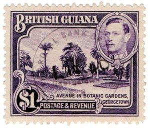 (I.B) British Guiana Revenue : Duty Stamp $1 (Botanic Gardens)