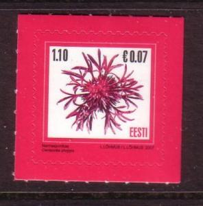 Estonia Sc572 2007 flower stamp Euro Added NH
