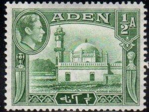 Aden Scott No. 16
