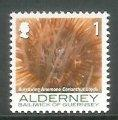 Alderney - 2006 Corals and Anemones (1p) (MNH)