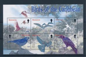 [40118] Montserrat 2003 Birds Vögel Oiseaux Ucelli   MNH Sheet