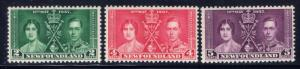 Newfoundland 230-32 MNH 1937 KGVI Coronation