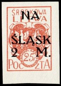 CENTRAL LITHUANIA / MITTELLITAUEN - 1921 Mi.23B 2M/25f Mint* - ref.881f