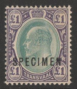 TRANSVAAL : 1903 KEVII £1 green & violet, SPECIMEN, wmk crown CA.