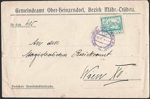 CZECHOSLOVAKIA 1919 20h imperf on cover to Vienna..........................53837