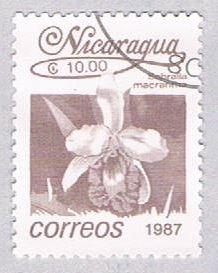 Nicaragua Flower brown 10 - pickastamp (AP108720)