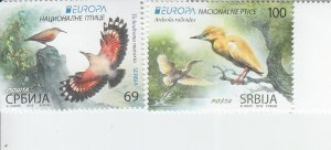 2019 Serbia Birds Europa (2) (Scott NA) MNH