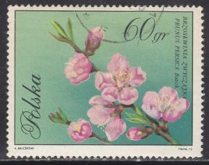 Poland 1863 CTO 1971 Peach Blossom