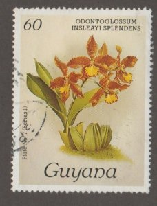 Guyana 1029 Orchid