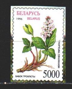 Belarus. 1996. 162 of the block. Marsh plants, flowers. MNH.