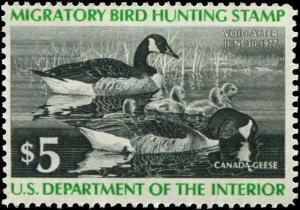 USA  SC# RW43 Duck Hunting $5.00 MNH