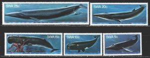 South west africa. 1980. 467-71 from the series. Whales, fauna. MNH.