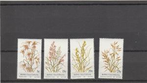 Bophuthatswana  Scott#  80-3  MNH  (1981 Grasses)