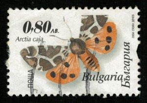 Butterfly (TS-2035)