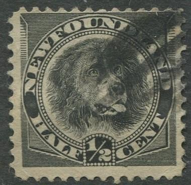 Newfoundland - Scott 58 - QV Definitive - 1894 - Used - Single 1/2c Stamp