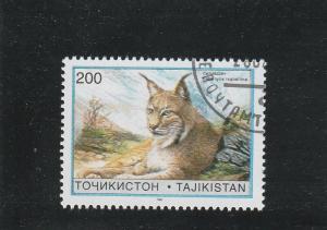 Tajikistan  Scott#  97  CTO  (1996 Lynx)