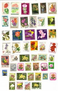 Flowers from around the world - stamp mix
