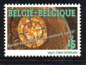 Belgium Sc B1110 1993 Cancer stamp mint NH