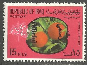 IRAQ SCOTT O242
