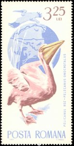 Romania #1767-1776, Complete Set(10), 1965, Birds, Never Hinged