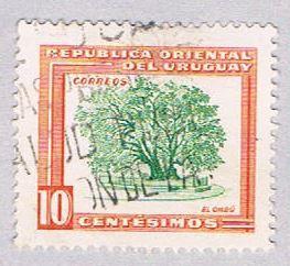 Uruguay 612 Used Ombu tree 1954 (BP26617)