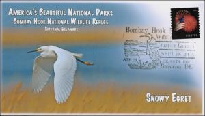 2015, Bombay Hook NWR, America's Beautiful NP, Pictorial, Snowy Egret, 15-235