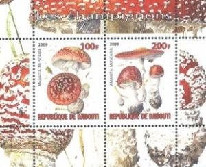 Djibouti 2009 Champignons Plants Mushrooms Fungi Nature M/S Stamps MNH (3)