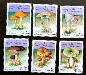 *FREE SHIP Afghanistan Mushroom 1996 Fungi Plant Flora (stamp) MNH