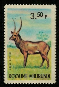 Animals, 3.50F (T-4974)