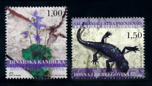 [69974] Bosnia Herzegovina 2004 Flora Flower Salamander  MNH