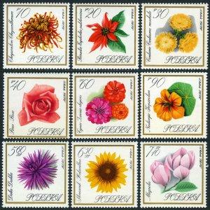 Poland 1430-1438, MNH. Flowers.Chrysanthemum, Poinsettia, Centaury, Rose, 1966