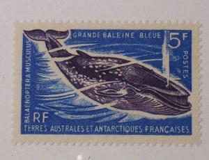 French Southern & Antarctic Territories Scott #25 unused
