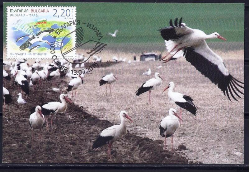 BULGARIA ISRAEL STAMPS 2016 JOINT ISSUE BIRD MIGRATION MAXIMUM CARD FAUNA
