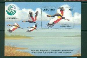 Lesotho  #944 (1993 Cranes Earth Summit sheet) VFMNH CV $6.50