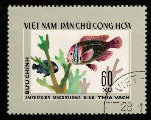 Fish, 60xu (T-5703)