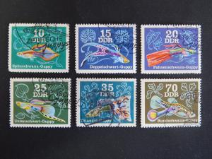 DDR, Fish, series, (105(IR))