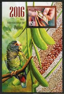 MOZAMBIQUE  2016 YEAR OF THE PEA  SOUVENIR  SHEET MINT NEVER HINGED