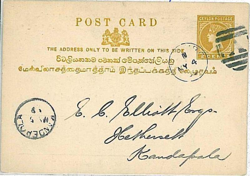 22526  - POSTAL HISTORY : CEYLON - POSTAL STATIONERY CARD - 1899