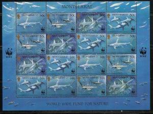 Montserrat 998 1999 WWF Sharks m/s MNH