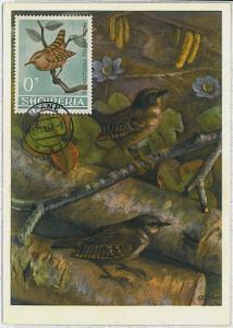 MAXIMU CARD - Fauna animals BIRDS : ALBANIA 1964  #6