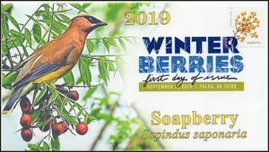 19-249, 2019, Winter Berries, Digital Color Postmark, First Day Cover, Soapberry