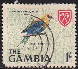 Gambia 222 USED 1966 Blue Bellied Roller