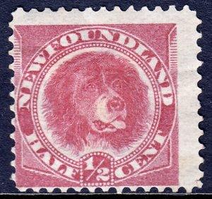 Newfoundland - Scott #56 - MHH - Crease - SCV $10.00